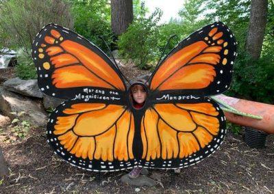 Butterfly Sandpoint Healing Garden